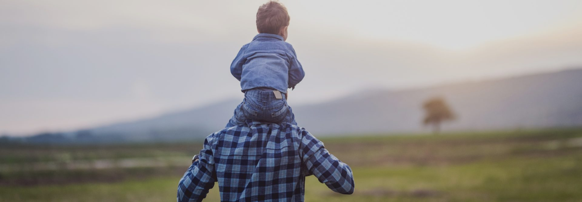 Father carries his baby boy on the shoulder while they walk through the field in the nature